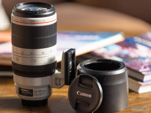 Read more about the article The Canon EF mount is alive - the EF 100-400 f/4.5-5.6L IS II USM on the EOSR5