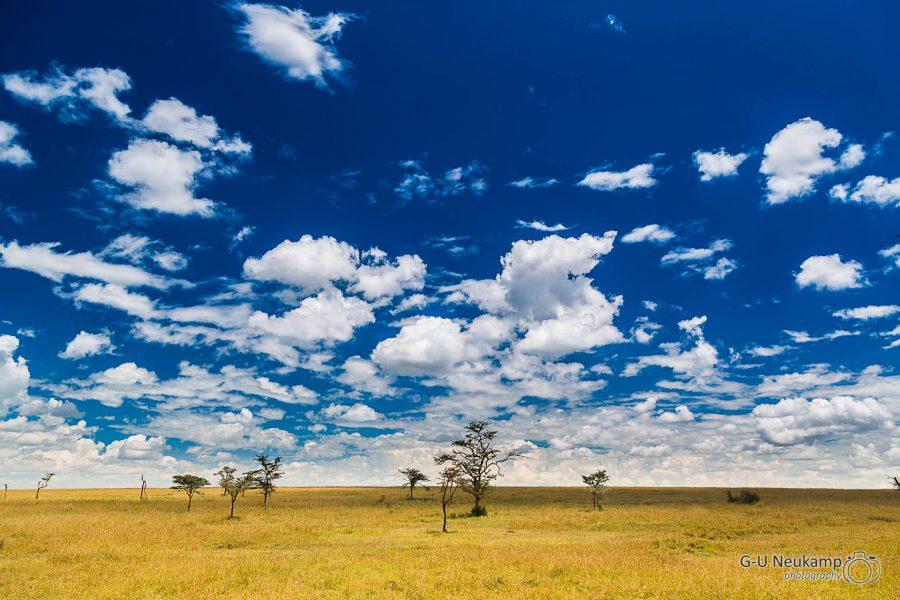 Ol Pejeta Conservancy,Kenia